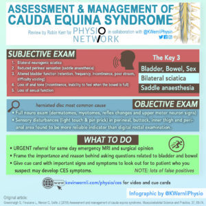 OCT18PN_Infographic_Cauda Equina Syndrome_KWERNLIPHYSIO